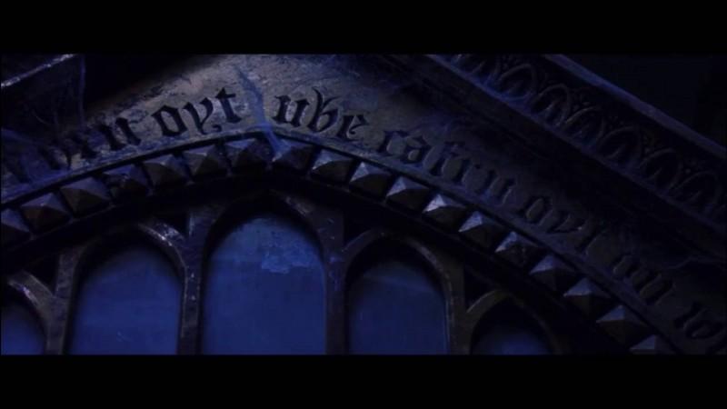 La nuit suivante, Harry montre le Miroir du Riséd à Ron. Il pense que ce miroir ne montre que ses parents, mais que voit Ron dans le miroir ?