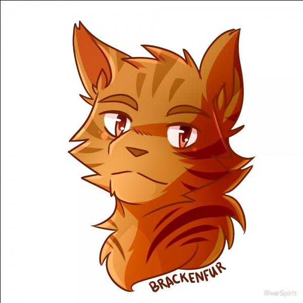 Quel était le nom de Poil de Fougère lorsqu'il était un chaton ?