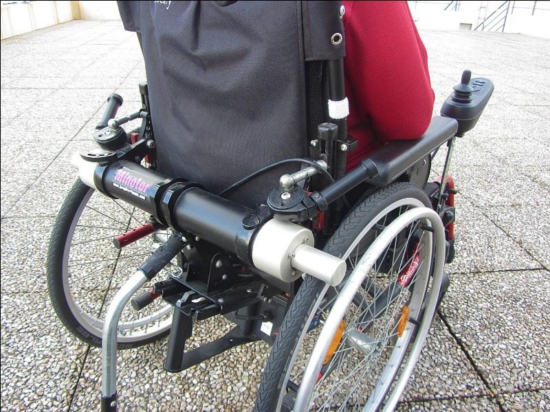 La journée mondiale des personnes handicapées se déroule le 14 juillet.