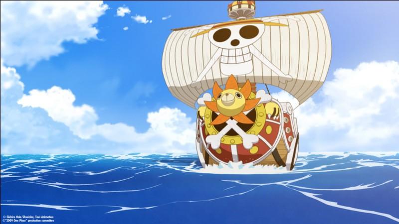 Quels sont les bateaux ayant appartenu aux Mugiwara ?