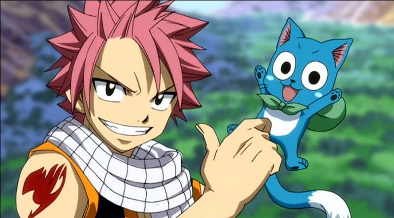 Comment s'appelle l'animal de Natsu ?