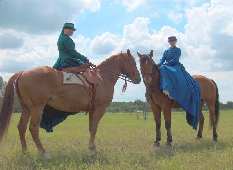 Quel est le nom de la discipline équestre représentée ?