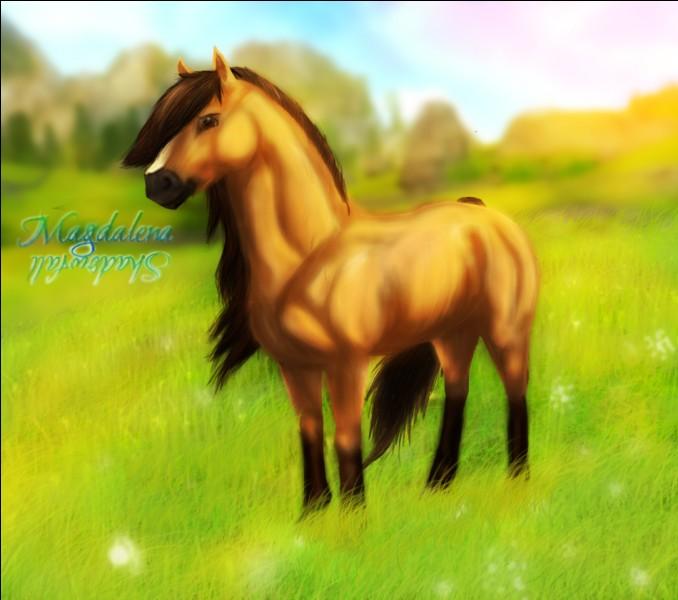Quelle cheval n'existe pas ?