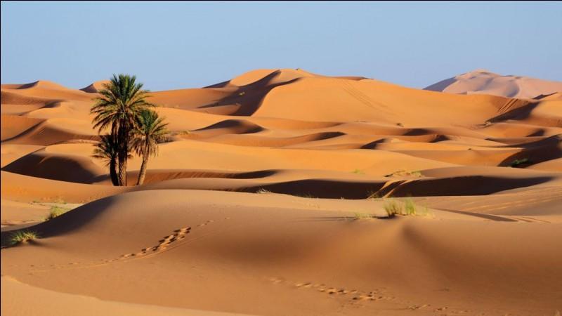Parmi ces pays, lequel n'a pas sur son territoire une partie du Sahara ?