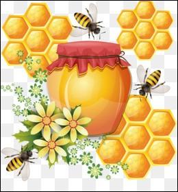 Les abeilles ouvrières l'utilisent pour colmater les fissures, fixer des éléments mobiles et lisser des surfaces rugueuses à l'intérieur de la ruche. Quelle est cette sorte de mastic collant, robuste, aux propriétés bactéricides ?