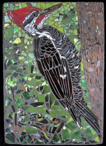 """Qu'est-ce qui est caractéristique chez le pivert """"Woody Woodpecker"""" ?"""