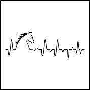 Quel est le rythme cardiaque du cheval au repos ?