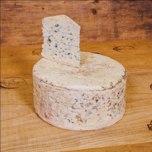 Quel est le nom du fromage à pâte persillée AOP qui vient de cette région ?
