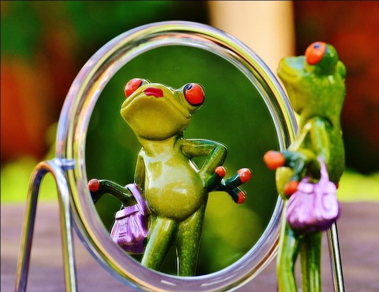Si vous cherchez un miroir amincissant, lequel choisir ?