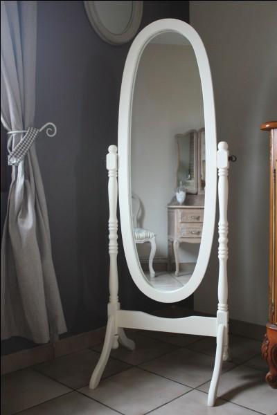 Quel est le nom de ce miroir ?