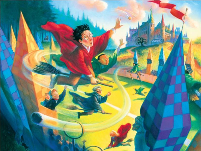 L'équipe adverse de quidditch a gagné le match. Quelle est votre réaction ?