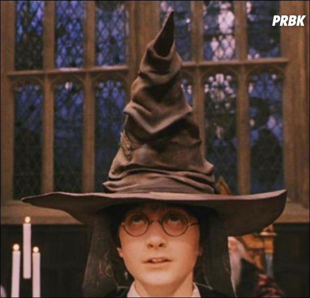 Dans quelle maison se retrouve Harry Potter ?