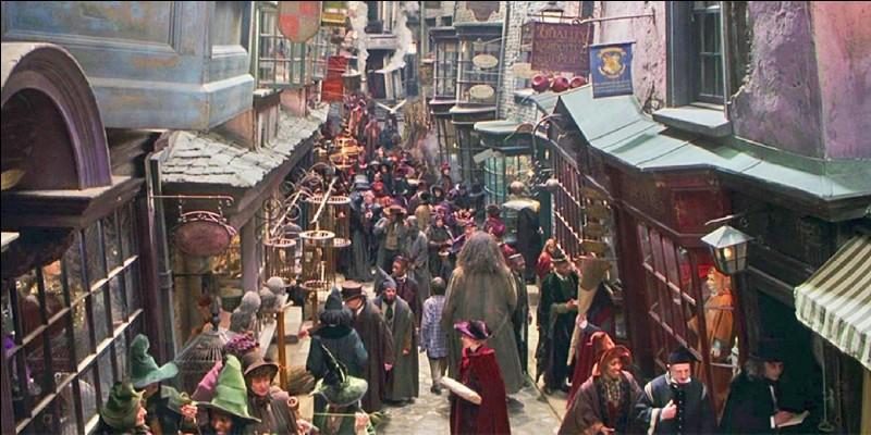 Comment se nomme la rue dans lequel Harry se rend pour faire les courses pour l'école de sorcellerie ?