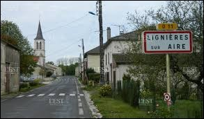 Nous sommes dans le Grand-Est à l'entrée de Lignières-sur-Aire. Petit village de 52 habitants, dans l'arrondissement de Commercy, il se situe dans le département ...
