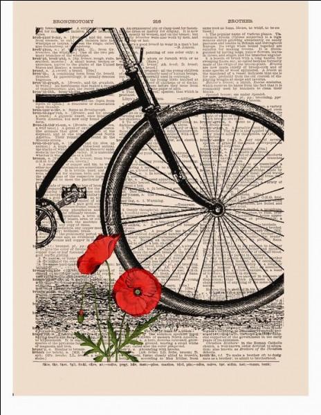 """Qui est l'auteure de """"La Bicyclette bleue"""" ?"""