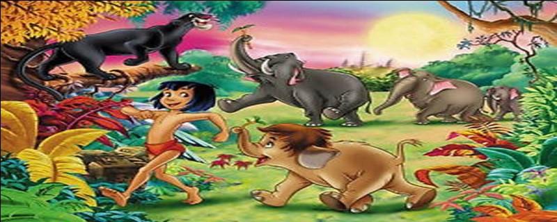 De quel ordre, les éléphants sont-ils ?