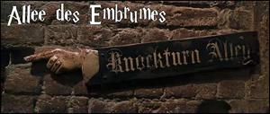 Dans quelle boutique de l'Allée des Embrumes Harry se retrouve-t-il car il s'est perdu dans les réseaux de cheminée ?
