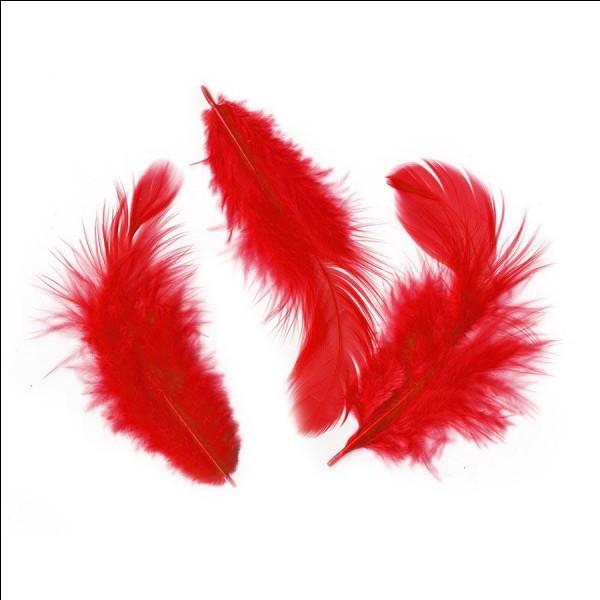 Lequel de ces oiseaux n'a pas de rouge dans ses plumes ?