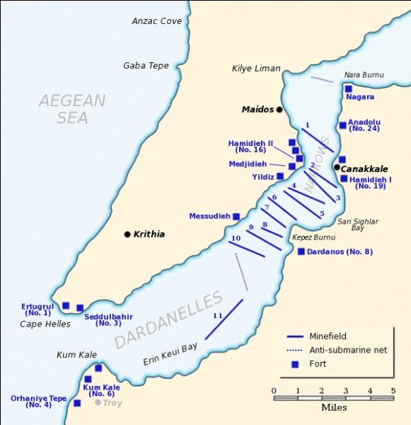 De mars 1915 à janvier 1916, Français et Britanniques se lancent dans une opération contre l'Empire ottoman, sur les détroits que celui-ci contrôle et où se situe sa capitale, Constantinople. Cette action militaire est appelée