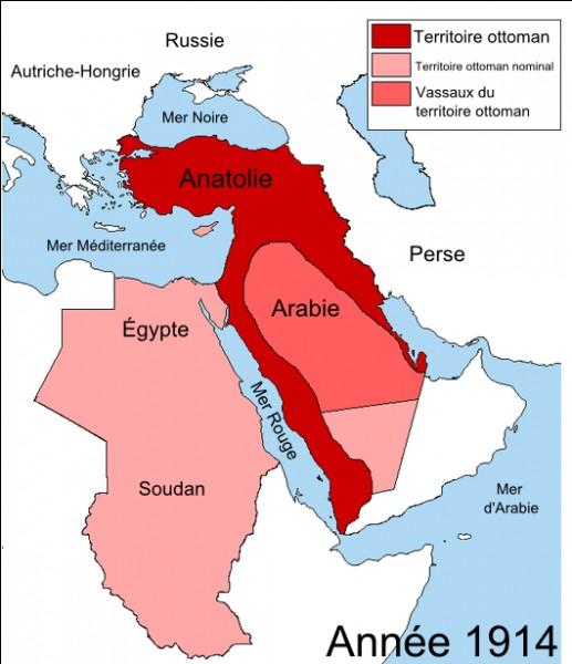 Triple-Alliance et Triple-Entente obtiennent chacune un allié supplémentaire cette même année 1914. Il s'agit