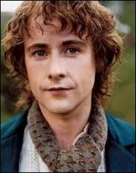 """Quel est le nom de l'acteur qui joue le rôle de Peregrin Touque dans la trilogie """"Le seigneur des anneaux"""" ?"""