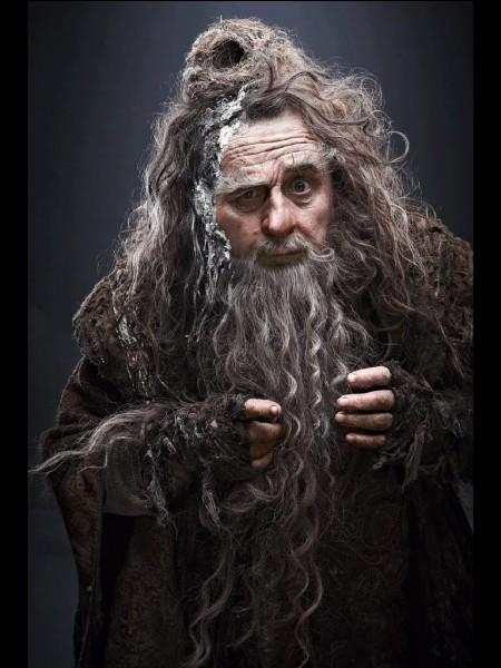 """Quel est le nom de l'acteur qui joue le rôle de Radagast dans la trilogie """"Le Hobbit"""" ?"""