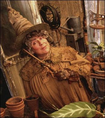 """Quel est le nom de l'actrice qui joue le rôle de Pomona Chourave dans la saga """"Harry Potter"""" ?"""