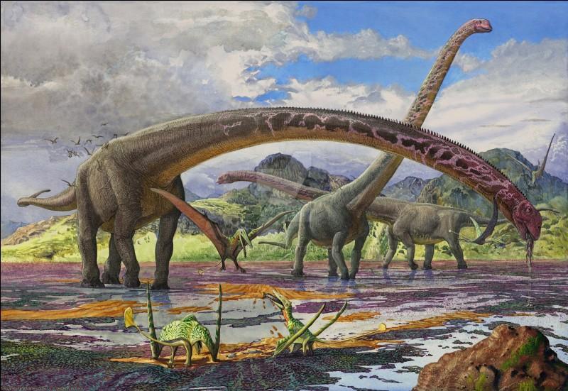 Lequel de ces dinosaures était le plus lourd ?