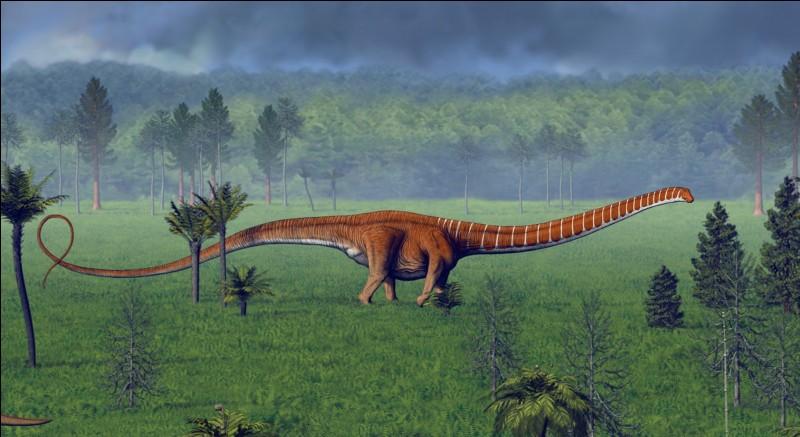 Lequel de ces dinosaures avait le plus long cou ?