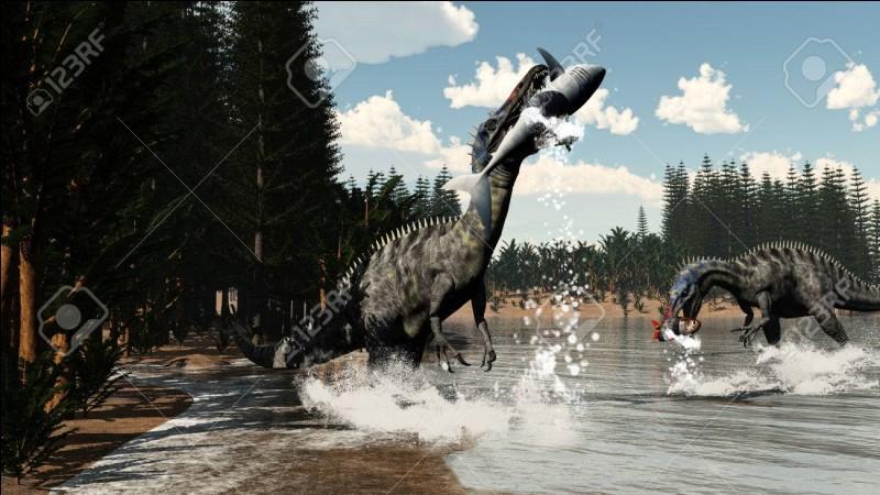 Où a été découvert le Suchomimus ?