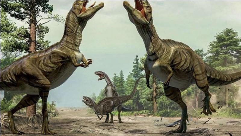 Quel était le plus grand des Tyrannosauridés ?