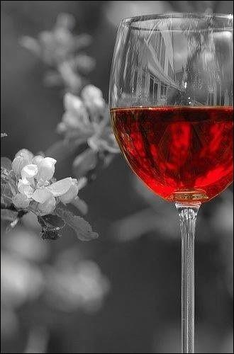 Le vin que nous avons choisi est un brouilly que nous sommes allés chercher directement chez le négociant :