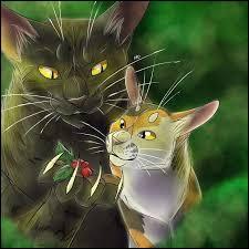 Quel est le nom du chaton qu'il a essayé de tuer par empoisonnement ?
