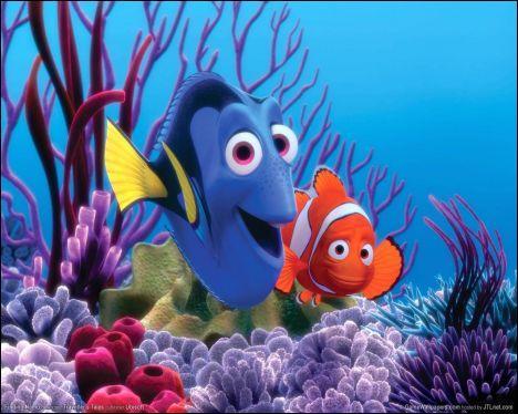 Dans quelle ville Marin doit-il se rendre avec Dory pour retrouver son fils Nemo ?