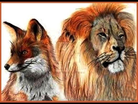 Lion ou renard ?