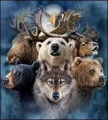 Quel animal préfères-tu ?