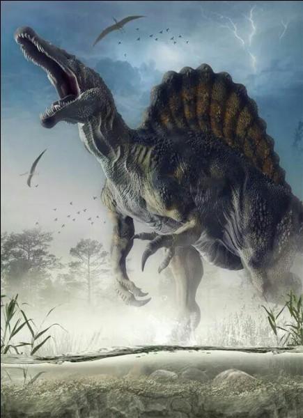 Quelle était la taille du spinosaure ?