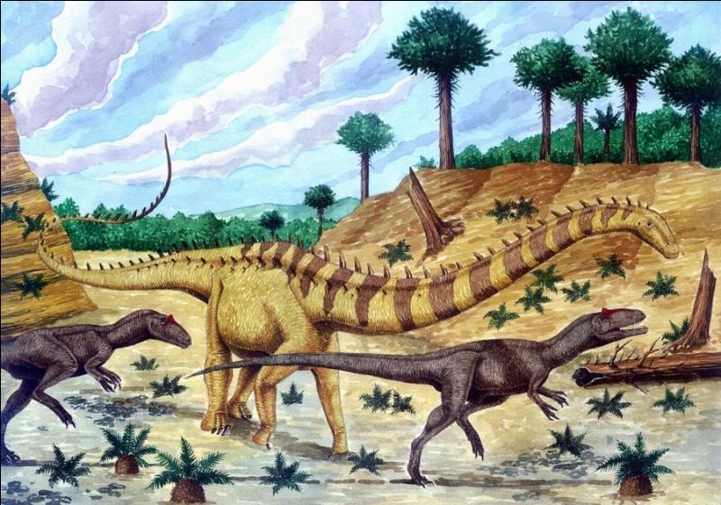 Quelle est la relation prédateur-proie en Amérique du Nord il y a 150 millions d'années ?