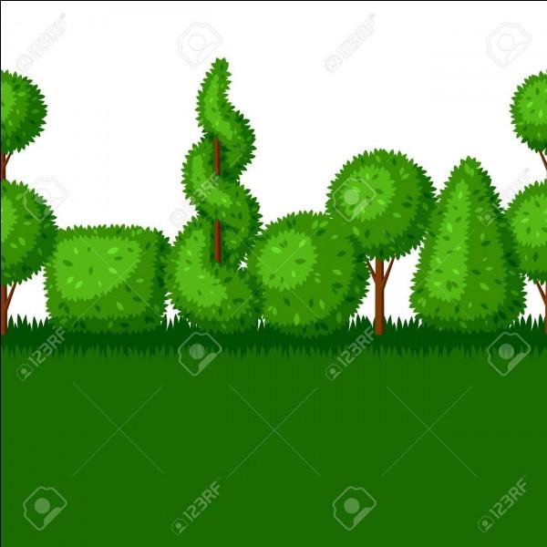 La vue d'un jardin sans arbr___ m'est insoutenable.