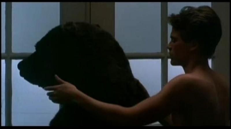 """Voilà le Fozzie au charme féminin, Susie l'ours, qui traverse le film """"Hôtel New Hampshire"""". Ce film est tiré du roman d'un grand écrivain américain, qui glisse (presque) toujours un ours et la lutte gréco-romaine dans ses livres. Qui est-il ?"""