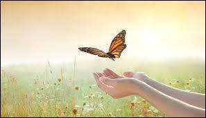 """À qui doit-on la célèbre citation : """"La vie est un mystère qu'il faut vivre, et non un problème à résoudre"""" ?"""