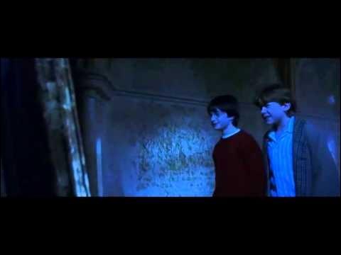 Qu'est-ce que Ron voit dans le miroir du Risèd ?