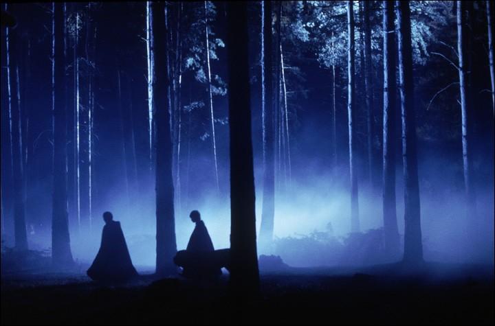 Alors qu'ils sont en retenue, plusieurs élèves de Poudlard doivent aller dans la Forêt interdite avec Hagrid ; qui sont-ils ?