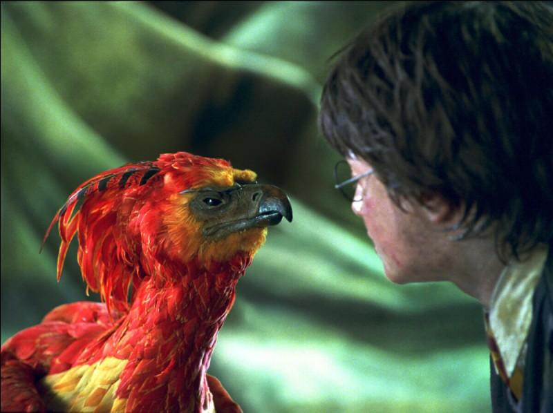 Qu'est-ce qui se fait entendre dans la Chambre des Secrets juste avant que Fumseck apparaisse ?