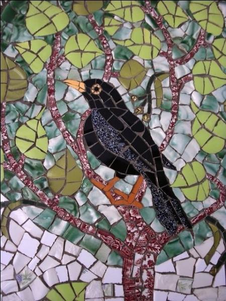 De ces trois oiseaux noirs, lequel a le bec jaune ?