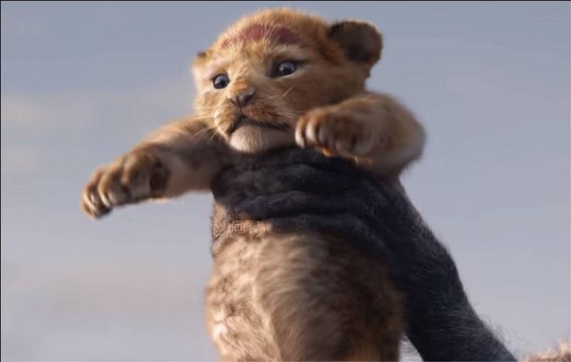 """Tu es au cinéma pour regarder le film """"Le Roi lion"""". Soudain, en plein milieu du film, ton enfant hurle en disant : """"C'est long, c'est nul, je veux regarder """"Le Grinch"""" !"""". Que fais-tu ?"""