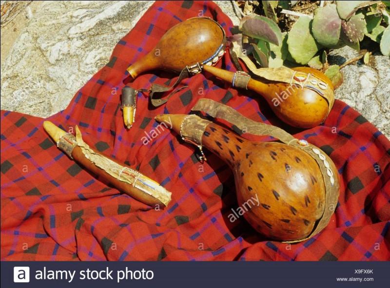 Plante voisine de la pastèque, dont le fruit fournit une pulpe amère et purgative, employée essentiellement pour les animaux !