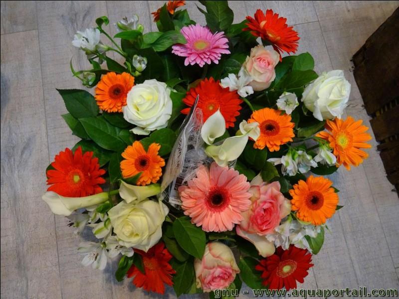 Quelles sont les deux photos sur lesquelles on voit des fleurs ?