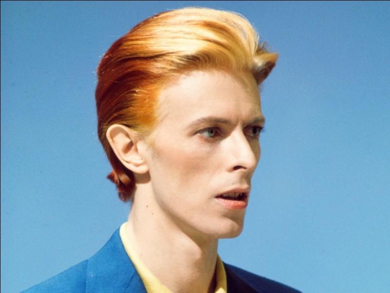 Quel titre a chanté David Bowie ?