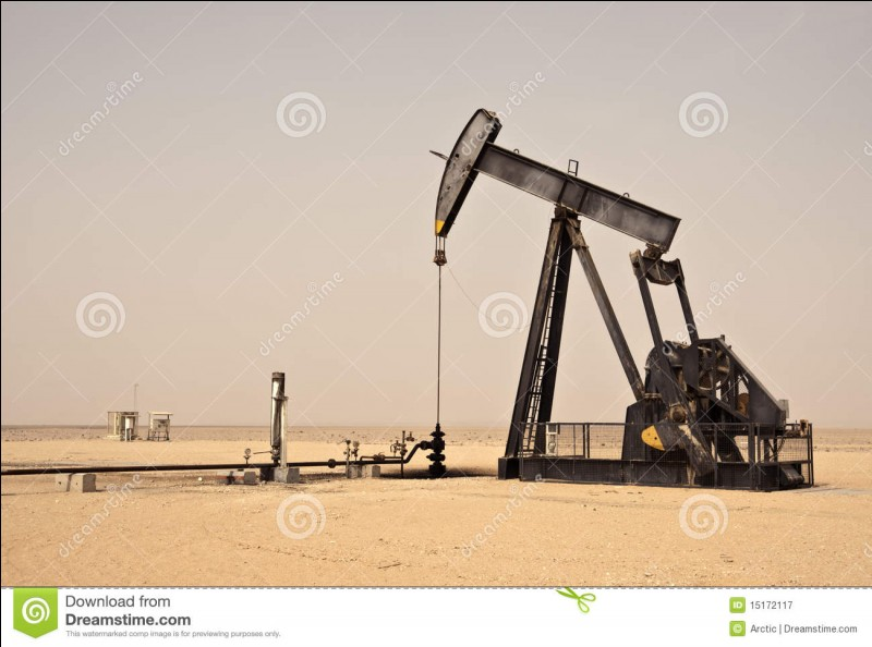 Votre richesse vient peut-être d'exploitations pétrolières. Comment surnomme-t-on le produit qu'elles extraient ?